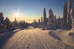 Die beliebtesten Skigebiete in der Schweiz